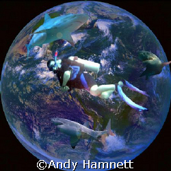 My dream of diving the globe and seeing sharks.  by Andy Hamnett 